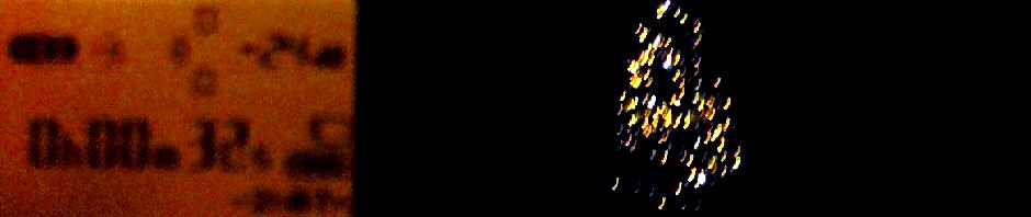 Christopher DeLaurenti